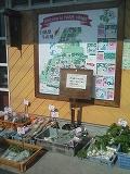 羽根村の案内図
