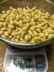 花之木小学校の大豆